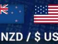 الدولار النيوزلاندي وأسبوع من المكاسب القوية