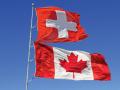 توصيات الكندى فرنك لا تزال دون الترند