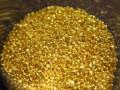 بورصة الذهب والترند الهابط يستمر حتى اللحظة