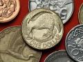 استمرار الدولار النيوزلندي في تحقيق الثبات الإيجابي