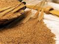 تداولات السلع وعقود القمح تنوي الهبوط واليك الاسباب