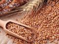 سعر السلع ينتعش والقمح يتصدر المشهد