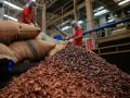 تداولات السلع وعقود الكاكاو تعلن رسميا عن إرتفاعات جديدة