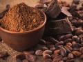 تداولات السلع ونظرة اعمق حول اسعار الكاكاو